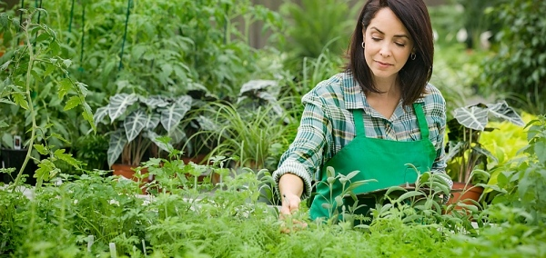 Why wear an apron when out for gardening